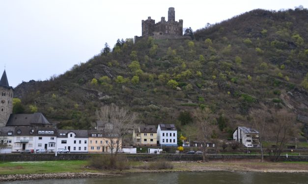 Castles along the Rhine River Cruise